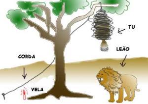 Leão1