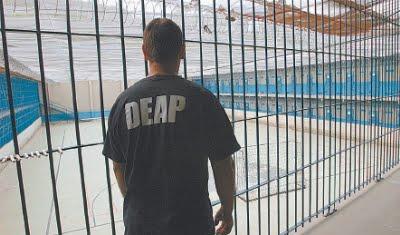 Agente do Deap