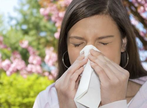 Informe sobre as Doenças Respiratórias de Inverno