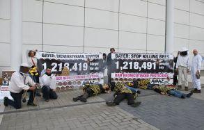 Avaaz chega a 15 milhões de membros13