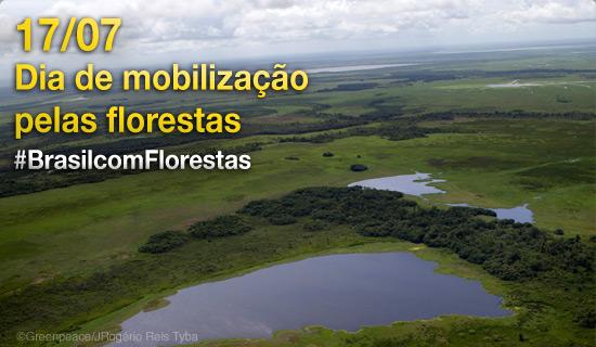 Junte-se ao movimento Brasil com Florestas