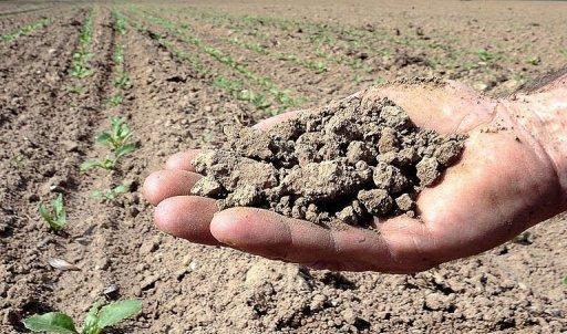 Reforma Agrária e da Defesa da Terra e Território no século