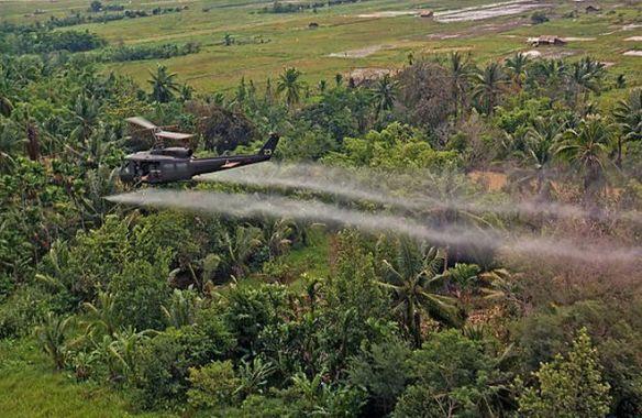 A arma química afetou pelo menos 3 milhões de vietnamitas e continua a provocar doenças no país.  Cinquenta anos depois de seus aviões militares jogarem 80 milhões de litros do agente laranja nas áreas rurais do Vietnã, os Estados Unidos iniciaram um projeto de limpeza nesta quinta-feira (09/08) em conjunto com o governo do país