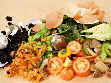 Comida do lixo