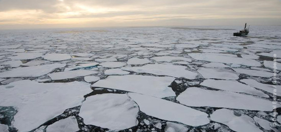 Somos 185 mil brasileiros pelo Ártico