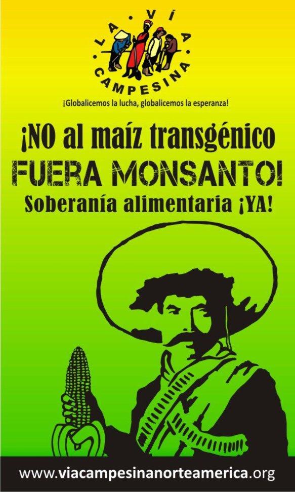 Carta ao povo e ao Governo do México - O Manifesto Milho: Não aos transgênicos Maiz