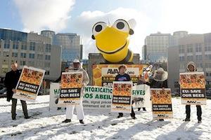 Vento, chuva e neve: mantivemos a pressão para salvar as abelhas