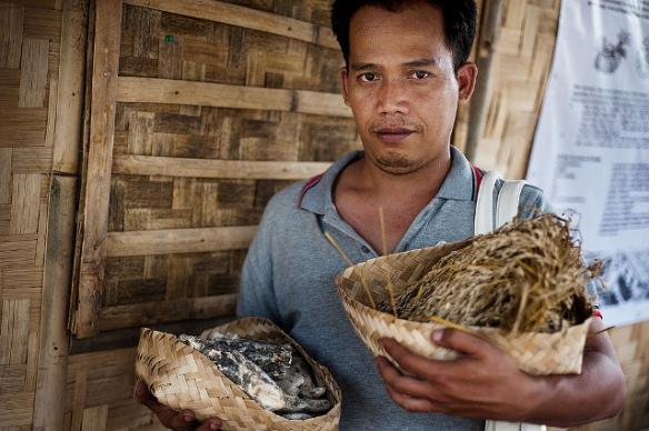 O Tratado Internacional de Sementes: uma resolução em apoio dos direitos dos agricultores