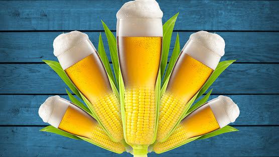 Ambev, Suas cervejas são produzidas com milho transgênico?, Dialison Cleber Vitti, Dialison Cleber, Dialison Vitti, Dialison, Cleber Vitti, Vitti, #DialisonCleberVitti, @dcvitti, dcvitti, #blogdodcvitti, Ilhota,