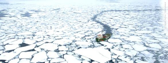 Mais uma ameaça ao Ártico, Greenpeace, Dialison Cleber Vitti, Dialison Cleber, Dialison Vitti, Dialison, Cleber Vitti, Vitti, #DialisonCleberVitti, @dcvitti, dcvitti, #blogdodcvitti, Ilhota, 2014, Newsletter, Feed