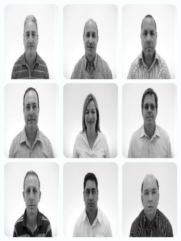 Vereadores de Ilhota, Dialison Cleber Vitti, Dialison Cleber, Dialison Vitti, Dialison, Cleber Vitti, Vitti, #DialisonCleberVitti, @dcvitti, dcvitti, #blogdodcvitti, Ilhota, 2014, Newsletter, Feed