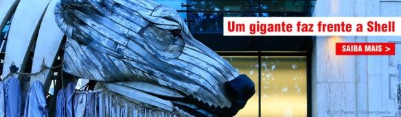 Grito pelo Ártico, Greenpeace, Dialison Cleber Vitti, Dialison Cleber, Dialison Vitti, Dialison, Cleber Vitti, Vitti, #DialisonCleberVitti, @dcvitti, dcvitti, #blogdodcvitti, Ilhota, 2015, Newsletter, Feed