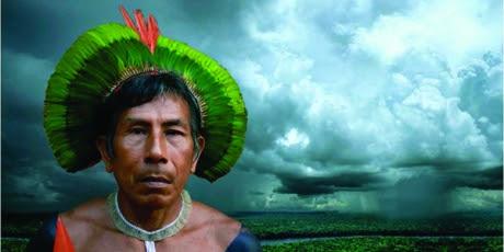 Uma ideia genial para salvar a Amazônia, Avaaz, Dialison Cleber Vitti, Dialison Cleber, Dialison Vitti, Dialison, Cleber Vitti, Vitti, #DialisonCleberVitti, @dcvitti, dcvitti, #blogdodcvitti, Ilhota, 2015, Newsletter, Feed