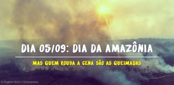 Dia da Amazônia, Greenpeace, Dialison, Dialison Cleber, Dialison Cleber Vitti, DialisonCleberVitti, Dialison Vitti, Dialison Ilhota, Cleber Vitti, Vitti, dcvitti, @dcvitti, #dcvitti, #DialisonCleberVitti, #blogdodcvitti, blogdodcvitti, blog do dcvitti, Ilhota, Newsletter, Feed, 2016, ツ,