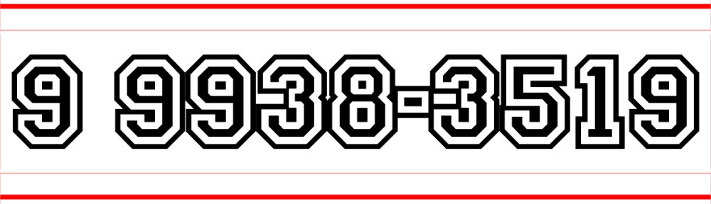 9 9938-3519
