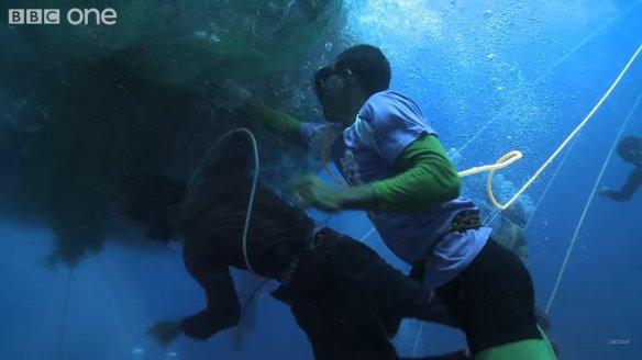 A prática mortal de pesca filipino