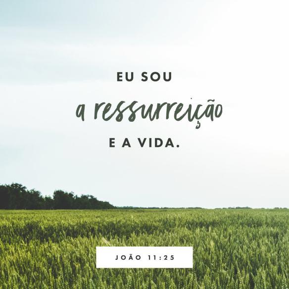 João 11-25