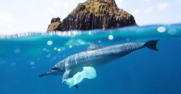 Oceano mar de plástico