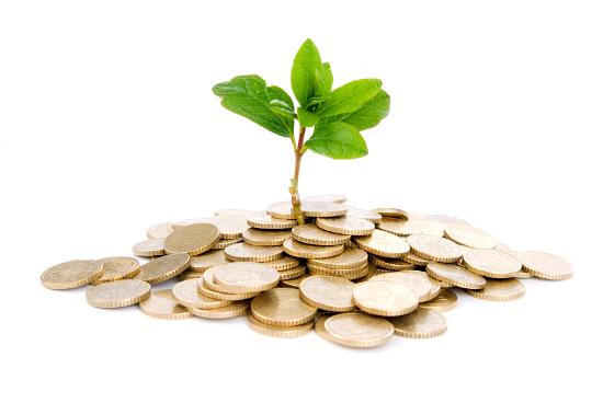 Mercado tem que ter sustentabilidade