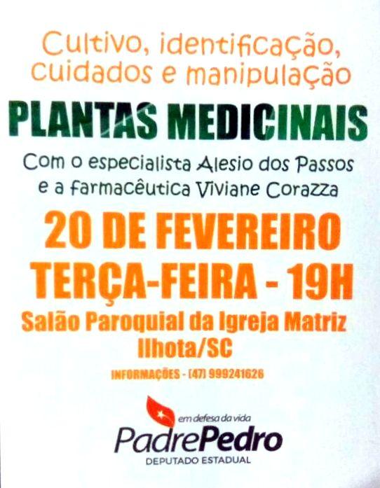 Palestra sobre cultivo, identificação, cuidados e manipulação de plantas medicinais