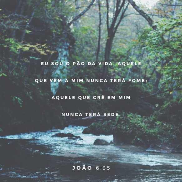 Eu sou o pão da vida - João 6-35